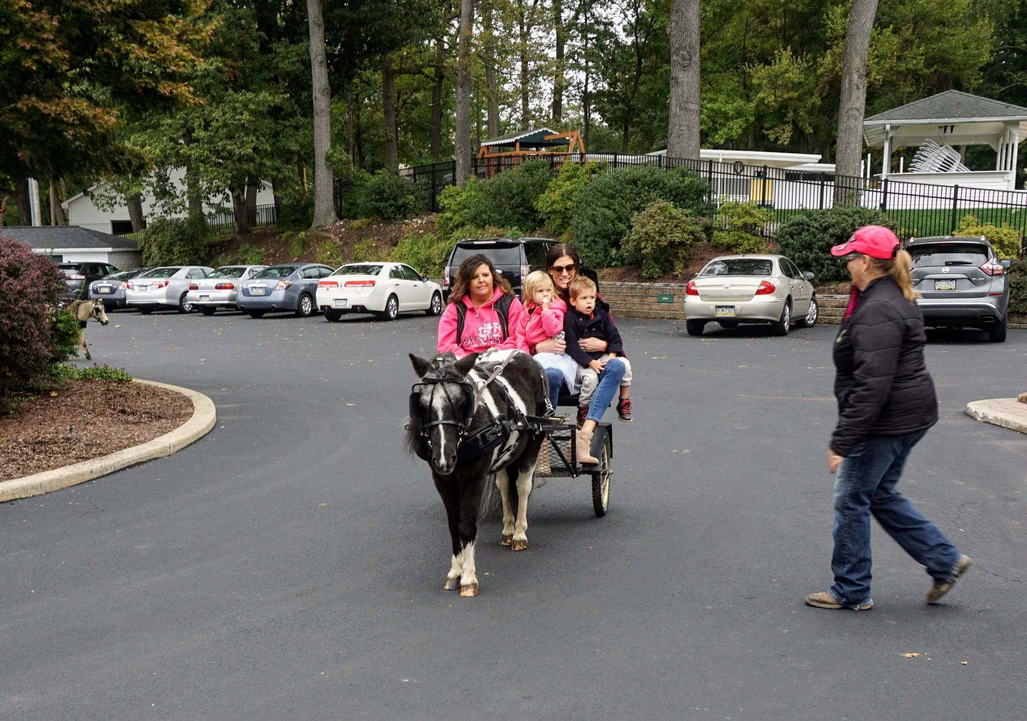 15_Pumpkins_and_Pony_Rides_10_14_18_002